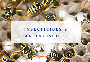 Insecticides et antinuisibles